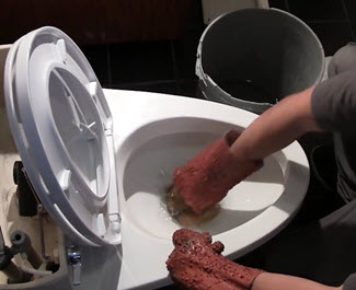 Wear rubber gloves and use a sponge to remove water from the toilet bowl.