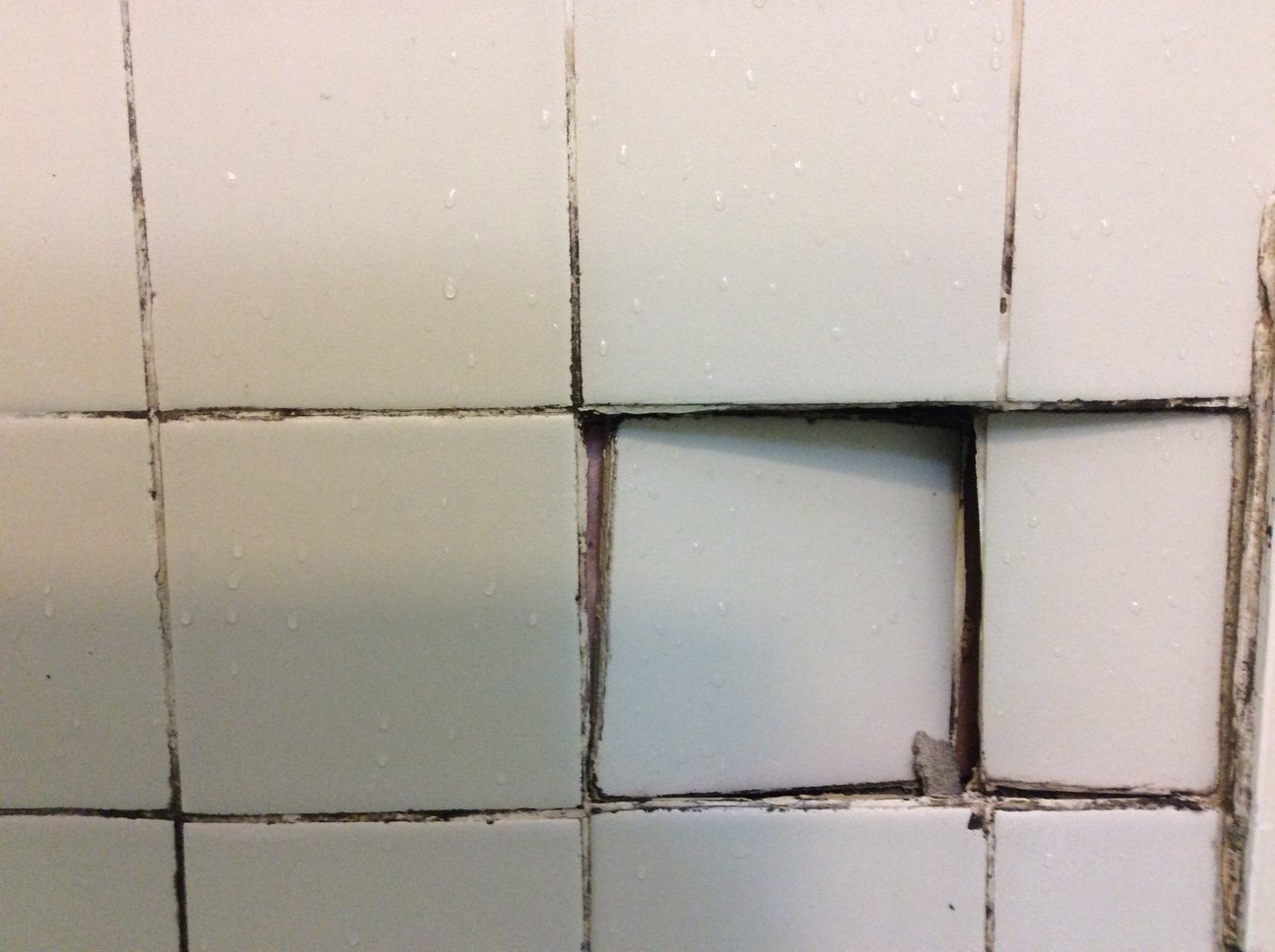A Waterproof Base for Tub Tile | ProTradeCraft